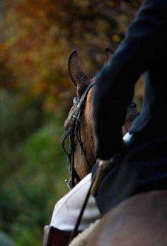 dressage rider and horse  awaiting their ride