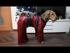 Как сшить комбинезон для собаки: пошаговая инструкция - YouTube