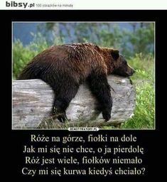 Wtf Funny, Funny Memes, Jokes, Life Humor, Man Humor, Polish Memes, Cool Pictures, Funny Pictures, Make Smile