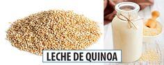 Cómo Preparar Leche de Quinoa/Quinua