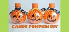 DIY Hallowen Crafts : DIY Candy Pumpkins Fall Craft and Gift Idea
