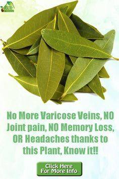We all know that laurel is a very good spice that has a special place in every kitchen. But we do not know that these leaves in addition to using them to prepare foods are also useful in our health. #remediesathome #varicoseveins #jointpain #memoryloss #headaches