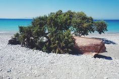 Washed up boat - Ialyssos Beach, Rhodus Rhodes Beaches, Rhode Island, Greece, To Go, Boat, Places, Travel, Rhodes, Greece Country