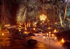 Candles in the forest...wow.  Just wow.  I love the candleabra!!!!  So classy, but slightly eerie as well. they don't quite belong and that's what makes this concept so delightful.