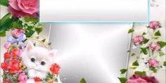 Vídeo com mensagem carinhosa para desejar Boa Tarde para as amigas!