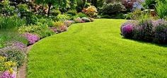 lawn idea