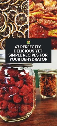 Who knew a dehydrator was such a useful little kitchen appliance? We show you over 40 recipes for your dehydrator that can be easily made.