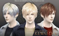 KEWAI-DOU: Contemporary hairstyle 3kan4on  - Sims 4 Hairs - http://sims4hairs.com/kewai-dou-contemporary-hairstyle-3kan4on/