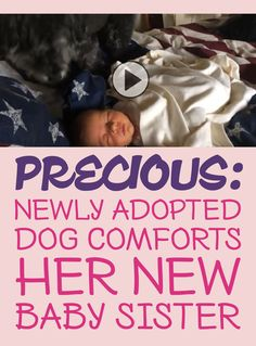 Precious: Newly adopted dog comforts her new baby sister!! <3
