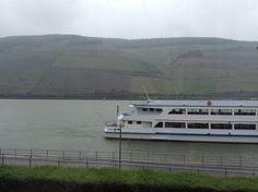 Rhein in a late may morning....