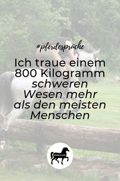 # equine sayings horse of love - Pferdesprüche / Zitate rund ums Pferd - Humor Funny Fool Quotes, Funny Quotes, Horse Quotes, Horse Sayings, Silly Jokes, Sports Activities, Horse Love, Love Quotes For Him, Adult Humor