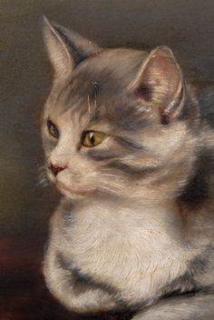 19th century portrait of a cat, unsigned