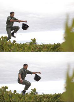 Les hommes et la vigne
