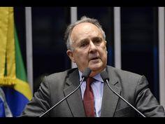 Cristovam Buarque defende aliança política para promover a independência...