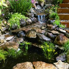 Big splash on a small budget - Sunset.com Love this little waterfall and stream with pond and plants.