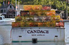 New England seaside tours