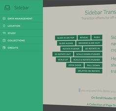 http://tympanus.net/Development/SidebarTransitions/ - Open Door
