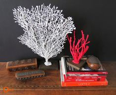 Learn how to make faux coral. This step by step shows you how to make different coral shapes using a glue gun. The perfect addition to any coastal decor. Glue Gun Projects, Craft Projects, Decor Crafts, Fun Crafts, Diys, Craft From Waste Material, Quick And Easy Crafts, Use E Abuse, Art Activities For Kids
