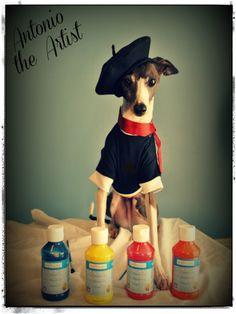 Antonio the artist!  Italian Greyhounds / Art
