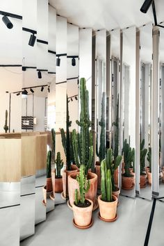 Weiss-heiten distorts reality in a collaborative interior for Ace & Tate in Munich - News - Frameweb Bohemian Restaurant, Indoor Plant Pots, Cafe Interior, Interior Styling, Room Interior, Brand Store, Munich News, Retail Space, Commercial Interiors