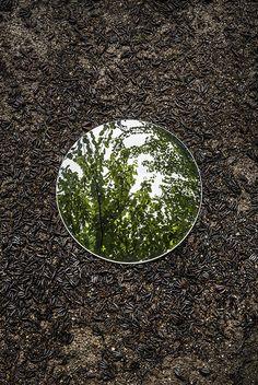 Reflections by Sebastian Magnani