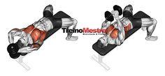 Exercício pull over com peito ou costas execução correta