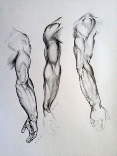 Anatomy Drawing Tutorial Arm Sketches by AdanMGarcia - Arm Drawing, Human Figure Drawing, Figure Sketching, Figure Drawing Reference, Body Drawing, Anatomy Reference, Life Drawing, Human Figure Sketches, Anatomy Sketches