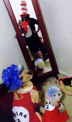 Woman's Cat in the Hat Costume with Pet Dogs Thing 1 Thing 2… Coolest Halloween Costume Contest