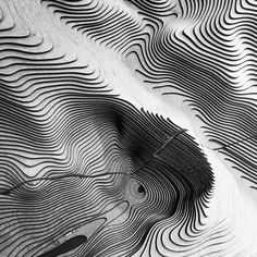 Fine #lines in #bnw (2/3)  Photo by Noëmie Forget. #minimal #black #abstract