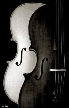violines b/n
