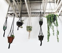 Up the green in your space by installing a hanging succulent garden: