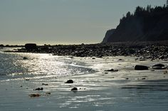 Beach in Homer with the bluffs on the right.