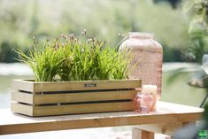 De Elan Mini bloembak heeft een verfijnde vormgeving met aan de zijkant balkjes met ca. 1 cm tussenruimte. Vuren balkjes 2x4,4 cm. Inclusief zwarte binnenzak. Patio Rugs, Outdoor Furniture, Outdoor Decor, Facade, Planters, Mini, Patio Ideas, Home Decor, Balcony