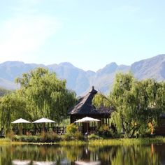 Your next tasting in Stellenbosch is at a boutique winery nestled in the Jonkershoek Valley. Taste beautiful hand-crafted wines from a small island overlooking a damn, which reflects the dramatic mountain range from above. History Of Wine, Summer Romance, Travel Checklist, Small Island, Most Romantic, Day Tours, A Boutique, Perfect Place, South Africa
