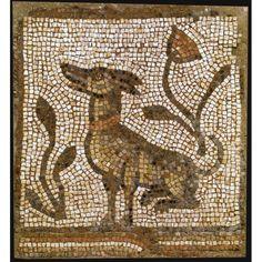 Chien de la mosaïque. Mignon. 5-6 siècle