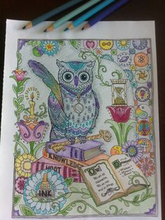 Creative Haven Owls Coloring Book Adult By Lady Bug On Aug 2015 This Was A Birthday Gift For My Granddaughter