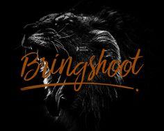 Bringshoot Font | dafont.com