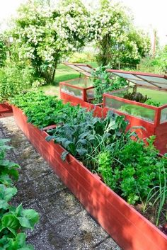 Pallkragar på annorlunda sätt Autumn Garden, Summer Garden, Interior Garden, Raised Garden Beds, Garden Inspiration, Vegetable Garden, Gardening Tips, Homesteading, Patio