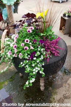 Tire Planter, more junk garden ideas in this post!