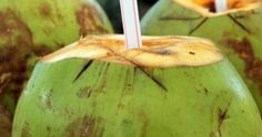 Is coconut water good for you? Here are 12 health benefits of coconut water that you need to know. Really, coconut water has nutrition we all need. Kefir Recipes, Healthy Recipes, Healthy Habits, Beneficios Do Coco, Smoothie Recipes, Smoothies, Juice Recipes, Cholesterol Levels, Immune System