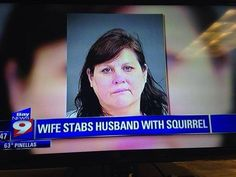 Wife stabs husband with squirrel. Totally nuts!