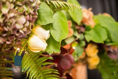 These photos our from our booth at the Florian Park Conference and Event Center Bridal Fair Fall Photos courtesy of Chrissy Rose Photography. Rose Photography, Conference, Floral Design, Bridal, Park, Purple, Winter, Plants, Winter Time
