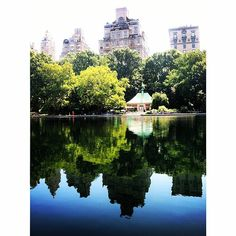 Central Park reflections #newyorkcityinspired