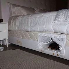 Funny pictures about Bed With A Place For Your Dog. Oh, and cool pics about Bed With A Place For Your Dog. Also, Bed With A Place For Your Dog photos. Built In Dog Bed, Wake Up With You, Dog Rooms, Pet Beds, Doggie Beds, Bed For Dogs, Bunk Beds, Cool Dog Beds, My New Room