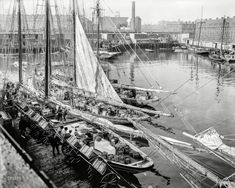 "Circa 1903. ""Unloading fish at 'T' wharf, Boston, Mass."" http://www.shorpy.com/node/19918?utm_content=buffer004a6&utm_medium=social&utm_source=pinterest.com&utm_campaign=buffer Detroit Pub"