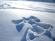 snow angel- one of the only things I like about snow! I love snow angels and just watching the snow fall. Winter Magic, Winter Snow, Winter Time, Winter Fun, I Love Snow, Let It Snow, Friends Are Like, True Friends, Serenity Now