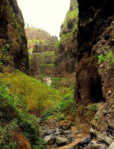 Barranco del Infierno (Hell's Ravine). Adeje, Tenerife, Canary Islands Tenerife, Island Beach, Canary Islands, Vacation Places, European Travel, Beautiful Places, Places To Visit, Around The Worlds, Travel Ideas
