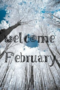 Welcome to February to all followers!!! A warm (or maybe cold) welcome!!!