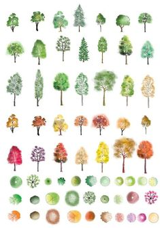 Selection of colour trees in photoshop for your architectural visuals. from Fir… Selection of colour trees in photoshop for your architectural visuals. from First In Architecture Landscape Sketch, Landscape Drawings, Landscape Design, Garden Design, Landscape Fabric, Urban Landscape, Photoshop Tree, Color Photoshop, Photoshop Software