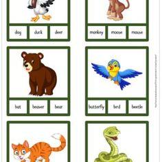 Skrivkort engelska – 5 sidor – Skolmagi.nu Kids Rugs, Decor, Kid Friendly Rugs, Decorating, Dekoration, Deco, Decorations, Deck, Decoration